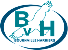 bvh logo