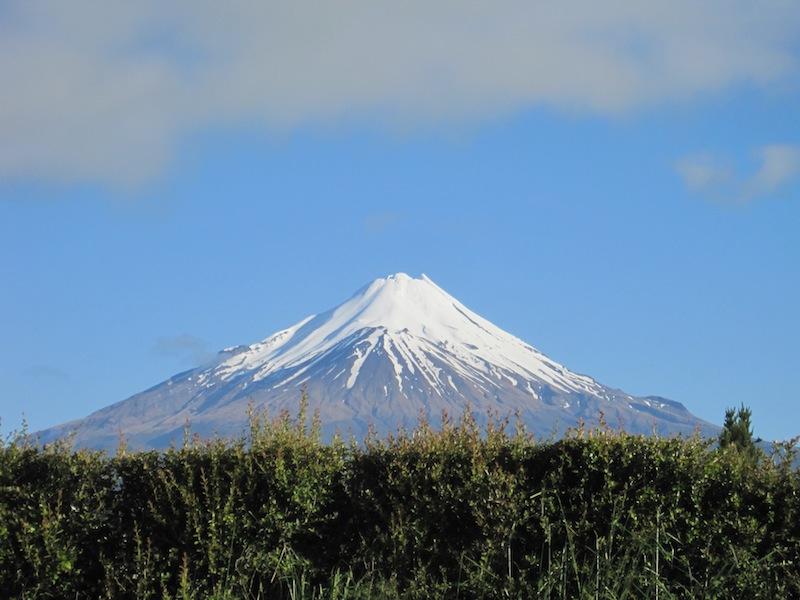 New Zeland Update: Kathryn's New Zealand Update